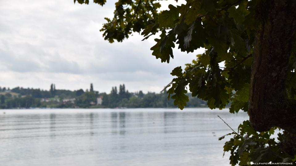 Bodensee Ausblick