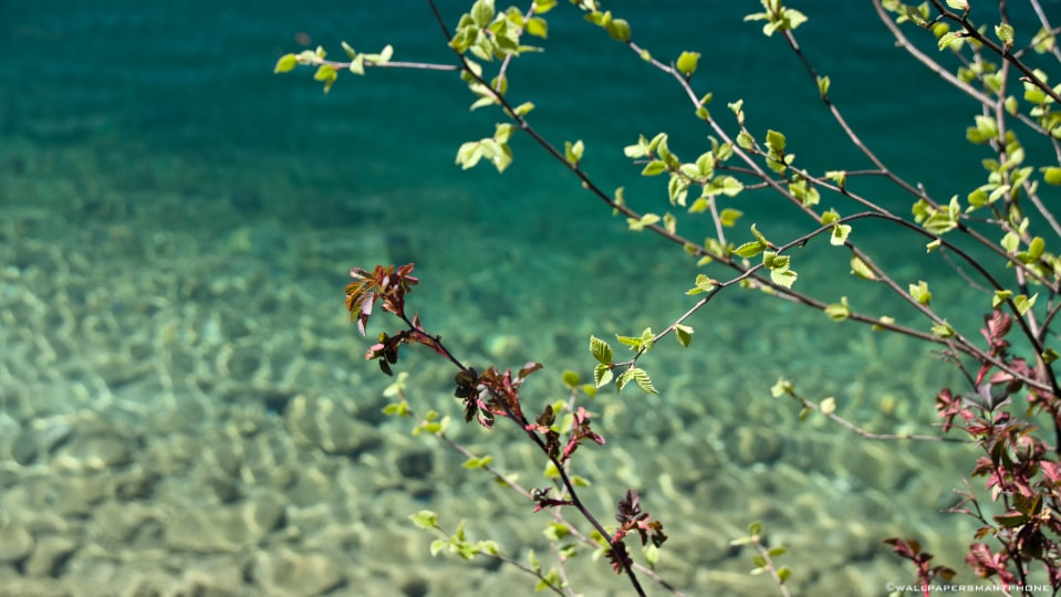 clear water of Eibsee