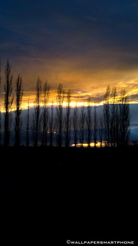 Sonnenuntergang hinter Bämen