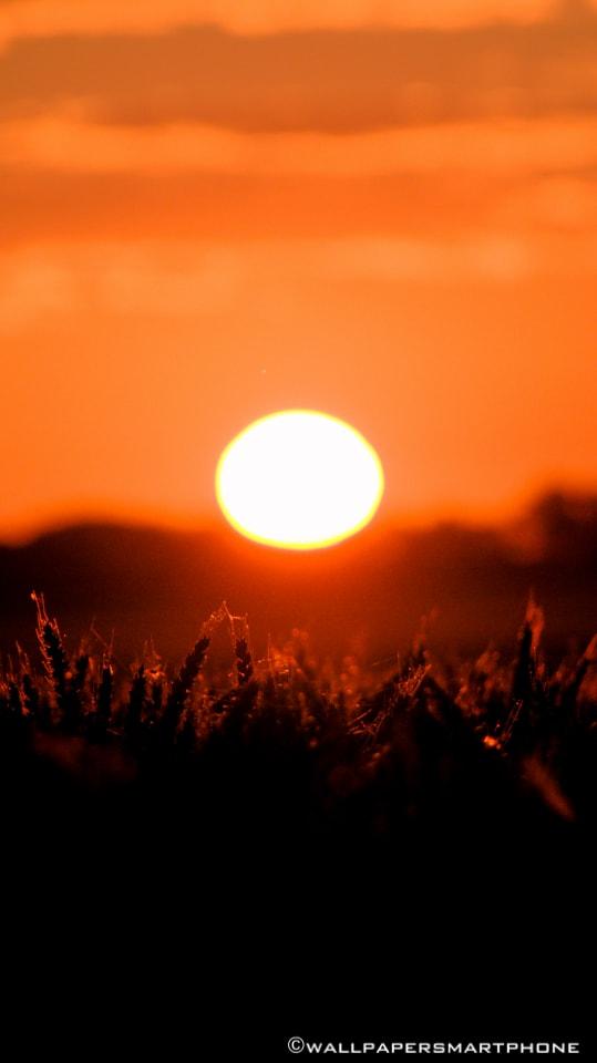 epischer Sonnenaufgang Lützen